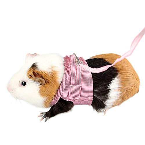 Ofanyia Imbracatura e guinzaglio per Animali Domestici di Piccola Taglia per l'imbracatura Regolabile in Tessuto di Cotone Guinea Pig
