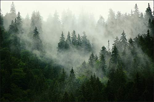 Muralo Fototapete Wald im Nebel 240x360 cm Vlies Tapete Wandtapeten Bäume Wohnzimmer Schlafzimmer Moderne Wandbilder XXL Landschaft Panorama Wand Dekoration