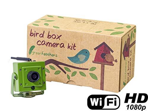 Green Feathers Wildlife 1080p WLAN Birdbox Kamera 2MP HD Auflösung mit IR (Night Vision), MicroSD Aufnahme, direkt Zugriff auf Handy oder Tablet und Deutsches Netzteil (EU-Stecker)