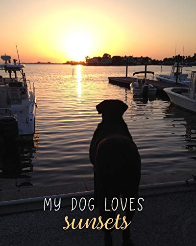 My Dog Loves Sunsets: 8x10 Lined Notebook