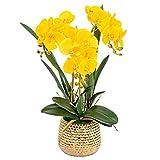Conjunto De Flores Artificiales, Orquídeas de seda de Bonsai Artificial Phalaenopsis con jarrón dorado, arreglo de flores de orquídeas falsas para la mesa de centro de la mesa Decoración de la oficina