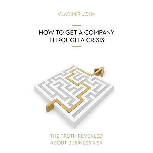 How to get a company through a crisis Audiobook By Vladimir John cover art