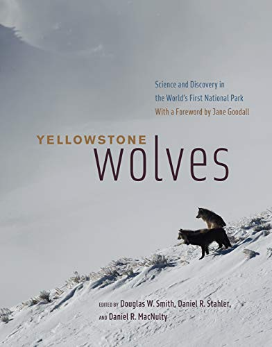 Yellowstone Wolves: Science and Discovery in the World's First National Park