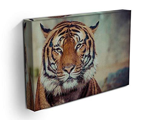 Lienzo impreso de primer plano de un tigre, diseño de cara de tigre, tela, 44in x 32in | 110cm x 80cm