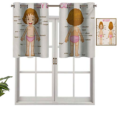 Hiiiman Cenefa recta de cortina con ojales de alta calidad para niños, niños, parte del cuerpo, clase de ciencia, juego de 2, 42 x 24 pulgadas, ideal para cualquier habitación y dormitorio