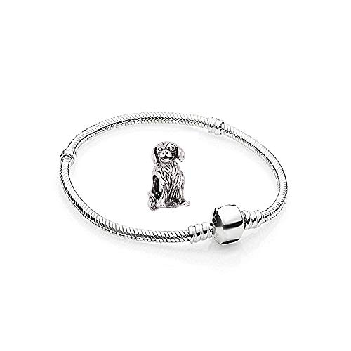 Charms Silber Hunde Edelstahl - 1 Armband und 1 Anhänger Starter Set Angebot - Damen Schmuck bettelarmband Pandora Style Kompatibel Charm Beads Bead Alle größe Tiere Herz Liebe 23cm