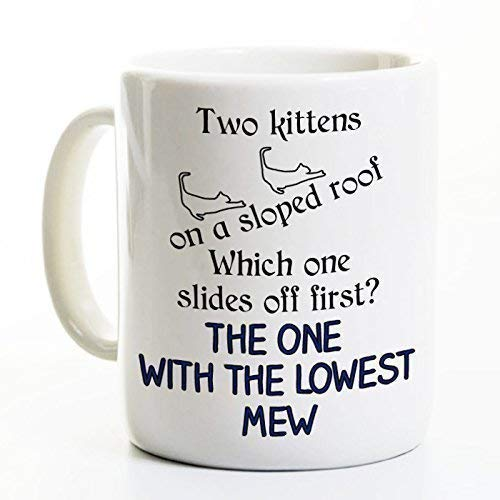 Physics Coffee Mug - Funny Coffee Mug - Scientist Gift - Slope Mew Humor