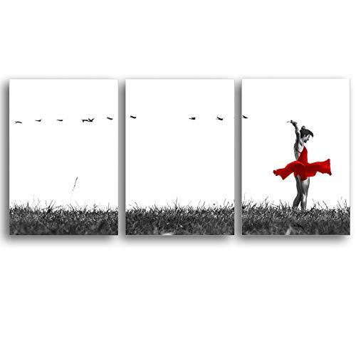 RuYun Moderne kunst vogel gras rode rok balleet danseres meisje canvas schilderij affiche en prints wandafbeeldingen voor de woonkamer decoratie zonder lijst 40x50cm