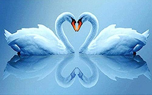 DYYjh Diamond Drawing 5d DIY Full Drill Embroidery Paintings Rhinestone Heart Shaped Swan DIY Painting Cross Stitch Arts Crafts for Home Wall Decor 40x50cm
