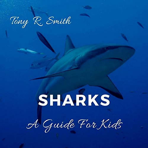 Sharks: A Guide for Kids audiobook cover art