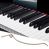 Shipenophy Los Pianos Verticales Ligeros reparan el Resorte del Extremo del Martillo del Piano del Metal de Las Piezas para el Piano