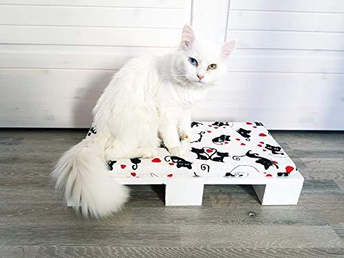 Sweet Little World Kittys Pallet