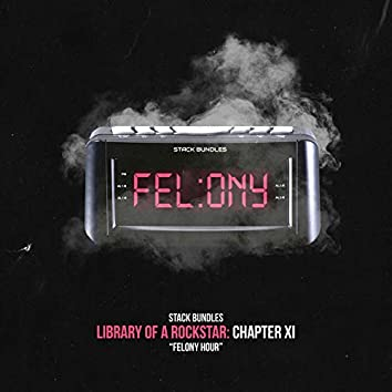 Library of a Rockstar: Chapter 11 - Felony Hour