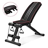 Yoleo Adjustable Weight Bench - Utility Weight Benches for Full Body Workout, Foldable...