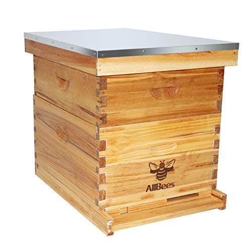 AliBees Bee Hive Kits 20 Frame Complete Langstroth Bee House with 10 Deep and 10 Medium hive Boxs,Dipped in 100% Beeswax,2 Layer