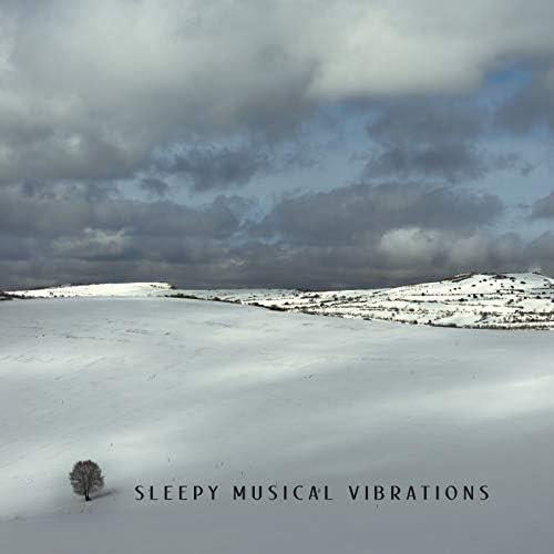 Deep Sleep Maestro & Peaceful Mind Music Consort