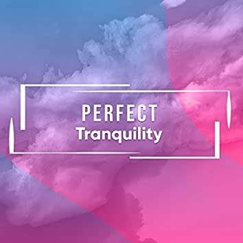 # 1 Album: Perfect Tranquility