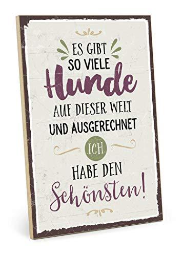 TypeStoff Holzschild mit Spruch – ES GIBT SO VIELE Hunde – im Vintage-Look mit Zitat als Geschenk und Dekoration (Größe: 19,5 x 28,2 cm)