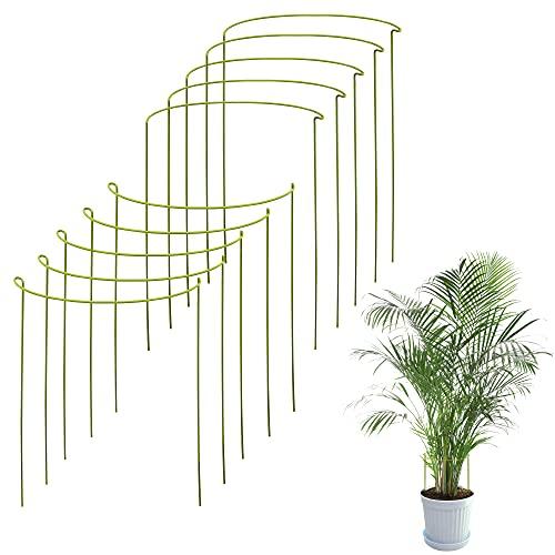 10-er Pack Rankhilfe Zimmerpflanzen | Pflanzenstütze Rund Für Große Pflanzen Und Blumen | Monstera Rankhilfe | Für Pflanzen-wachstum | Pflanzenstangen Für Monstera, Hortensien, Pfingstrosen Usw