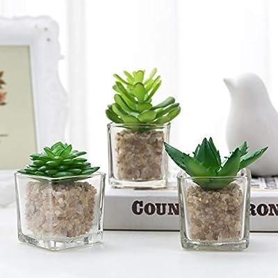 Small Glass Cube Artificial Plant Modern Home Decor/Faux Succulent Planter Pots, Set of 3