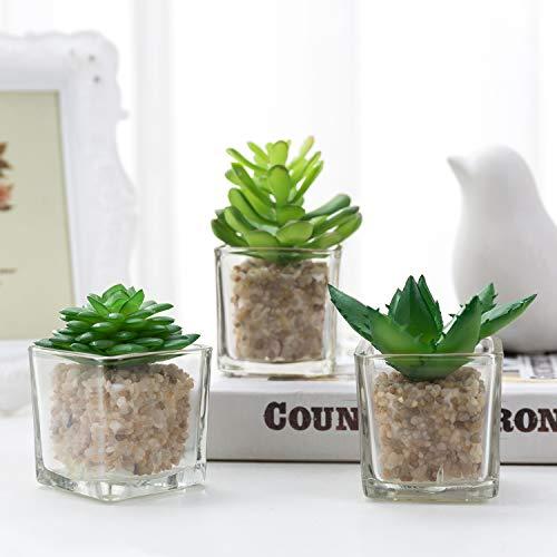 MyGift Kleiner Glas-Kunstpflanzenbehälter; Moderne Heimdeko. künstliche Sukkulente im Übertopf, Set mit 3Stück