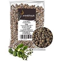 Minotaur Spices la Pimienta de Jamaica Conjunto, la Pimienta de Jamaica | 2 x 250 g (500 g) |