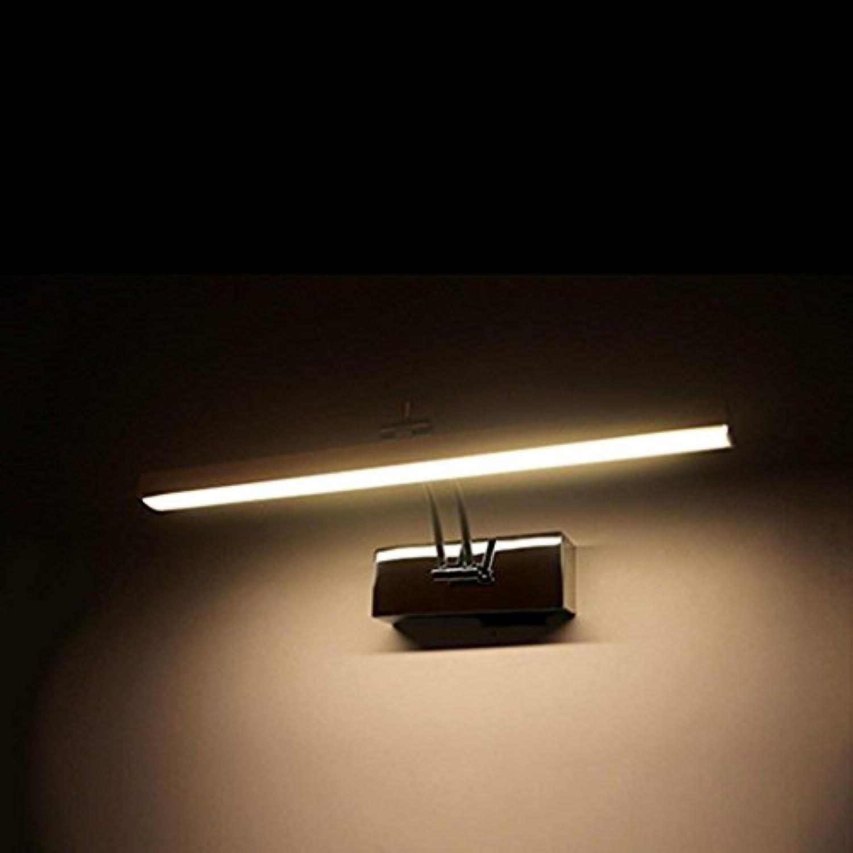 Badezimmerbeleuchtung LED-Spiegel Scheinwerfer, Badezimmer Moderne Spiegel Schrank Lichter Badezimmer Make-up Lichter Wasserdichte Nebel Led Beleuchtung Licht (Farbe   Warmwei-41cm)