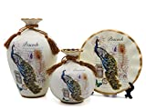 NEWQZ Decorative Vase Set of 3 for Living Room, Ceramic Vases with Peacock Deor