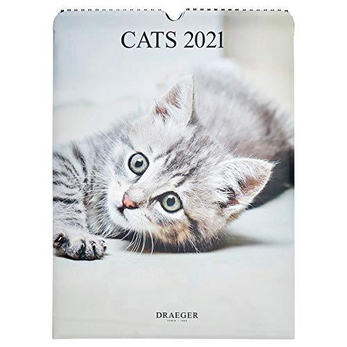 Draeger 2021 - Calendario de pared con diseño de gatos, 7 idiomas, certificado FSC mixto, tinta vegetal, calendario 2021 de pared, 29 x 39 cm