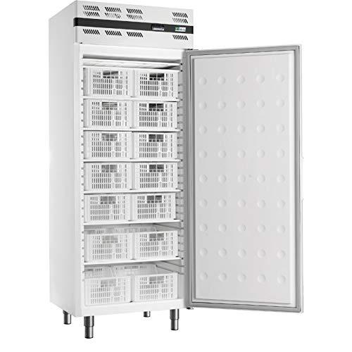 AFI Collin Lucy - Armario refrigerado con puerta completa y grupo alojado (535 L) blanco