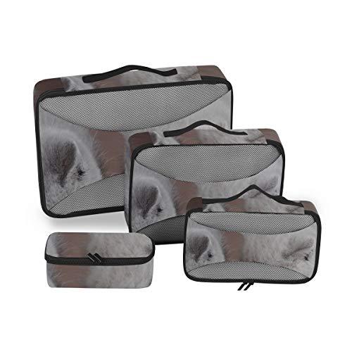 Gepäckverpackungsorganisatoren Hauskatze frisst Futter in der Schüssel Kofferorganisator Verpackungswürfel Reiseverpackungsorganisatoren Würfel 4-teiliger Kofferorganisator Leichte Gepäckaufbewahrung