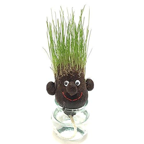 hair LABO ヘアラボ スマート(面長) 植物栽培キット(芝) 育て方マニュアル付き