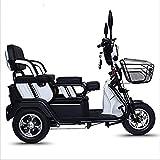 Silla de ruedas eléctrica Scooter eléctrico de tres ruedas scooter de ocio al aire libre ancianos 48V20A batería de litio de carga del motor 800W 300KG velocidad de tres engranajes, blanca Viaje cómod