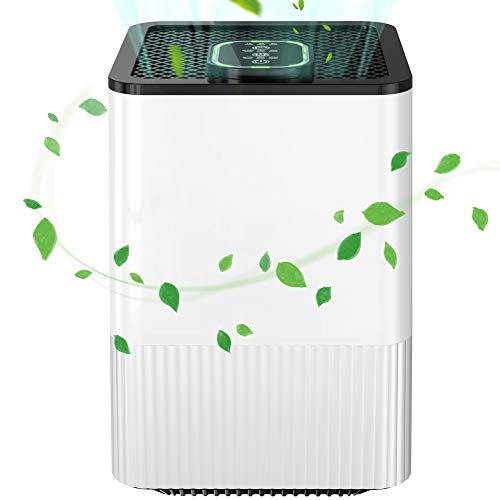 Purificateur d'Air Anion, 5-en-1 Air Ioniseur Maison Vrais Filtres HEPA, 1/4/8H Minuterie, avec indicateur de qualité de l'air,40db, Veilleuse, sans Ozone, Elimine 99,97% de Fumée Allergènes Poussière