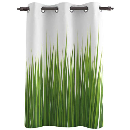 AM5CITY Kitchen Tier Curtains for Bedroom Living Room 45 Inches Long,Green Grass Sheer Curtains Grommets Window Drapes for Patio Door Bathroom Office Decor