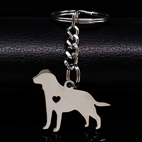 N/ A Tier Hund Edelstahl Schlüsselbund für Frauen Zarte Haustiere Pudel Silber Farbe Schlüsselbund Pokemon Schmuck