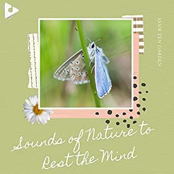 Sounds of Nature to Rest the Mind