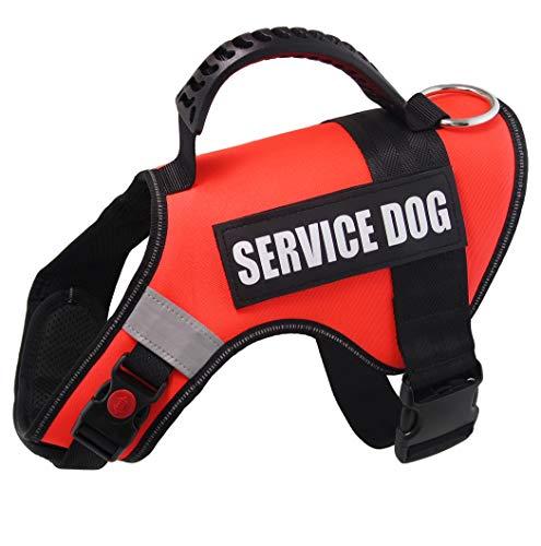 Dihapet Arnés para Perro, Chaleco de Servicio para Perro, Chaleco para Entrenamiento de Perro sin tirones para Caminar o Correr