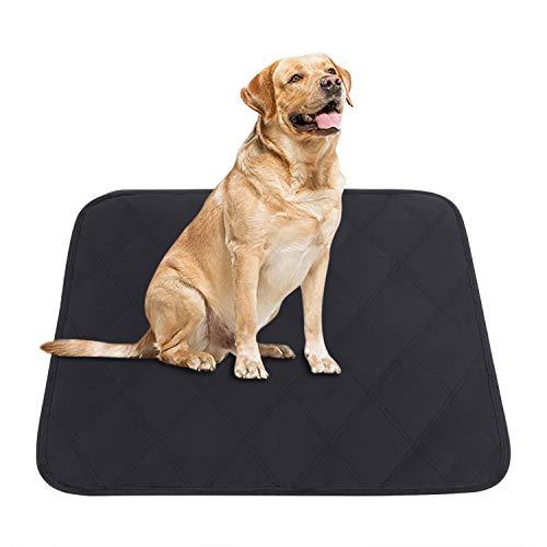JINTN Haustiermatte Hunddecke Decke für Haustier wasserdichte Hundedecke Matte Camping Decke hygienische rutschfeste Hundematte Hundekissen Hundebett Waschbar