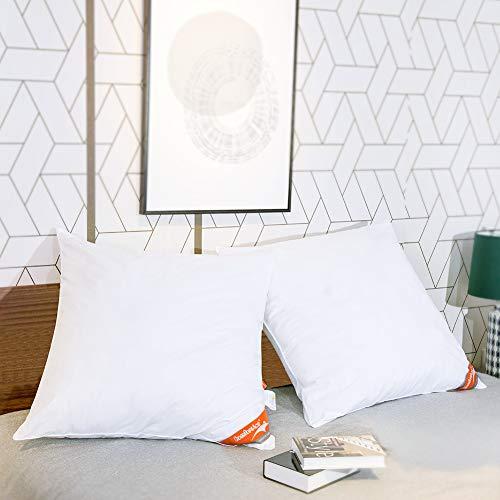 ComfortAce® Cervantes 80x80 cm Hochwertiges 2er Set Kopfkissen,Kissen mit Bezug aus Baumwolle,Softes Gewebe und Atmungsaktiv Mikrofaser Füllung,Anti-Milben Allergikergeeignet Waschbar,Weiß MEHRWEG