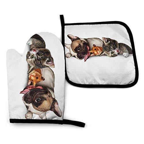 IMERIOi Ofenhandschuh- und Topflappen, 2-teiliges Set, niedliche Hundehamster-Katzenfutter wasserdichte Grillhandschuhe