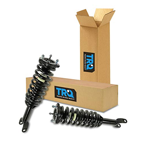 Strut & Spring Assembly Front Pair Set for Dodge Dakota Mitsubishi Raider