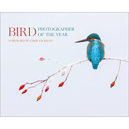 Bird Photographer of the Year: Collection 2 (Photography)