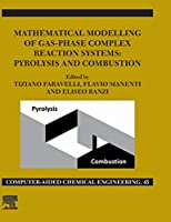 Mathematical Modelling of Gas-Phase Complex Reaction Systems: Pyrolysis and Combustion (Volume 45) (Computer Aided Chemical Engineering (Volume 45))