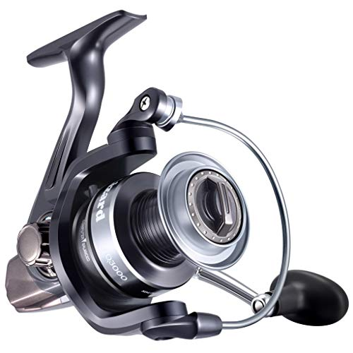 Lizard Light Weight Spinning Reel with 13+1 Stainless Steel BB, Carbon Fiber,Ultra Smooth Spinning Fishing Reel with 5.2:1 Gear Ratio, Powerful Fishing Reel for Saltwater or Freshwater