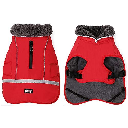 El Mejor Listado de Chaquetas y abrigos para comprar online. 1