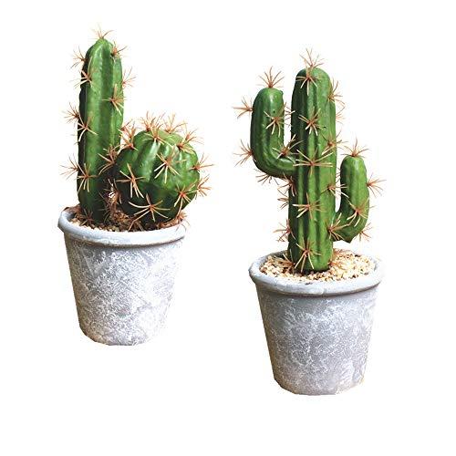 Fycooler Plantas suculentas artificiales Cactus falso Suculentas falsas decorativas en maceta Cactus falso Cactus con roca y arena Falso Cactus Artificial Para la decoración del hogar bricolaje