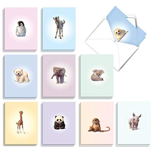 The Best Card Company - 20 Cute Kids Cards Boxed (4 x 5.12 Inch) - Assorted Blank Set (10 Designs, 2 Each) - Zoo Babies AM6726OCB-B2x10