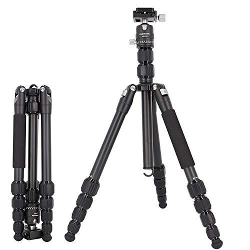 Koolehaoda  Tragbare 62-Zoll-Kamera-Stativ  Einbeinstativ &  Kugelkopf  Dünner Stativ (KQ-668)