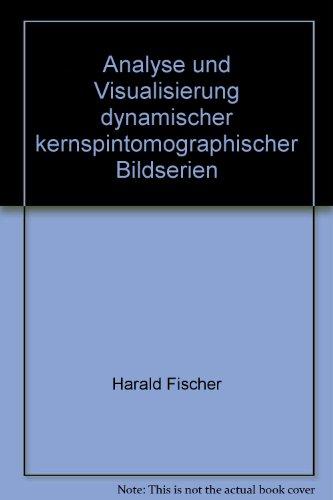 Analyse und Visualisierung dynamischer kernspintomographischen Bildserien